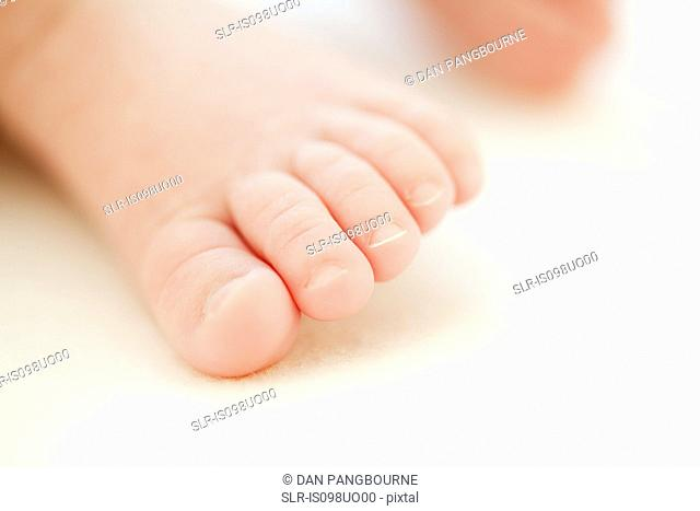 Close up of baby toes