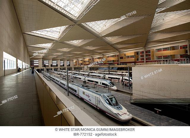AVE high-speed train of the Spanish rail company Renfe in the Zaragoza-Delicias railway station, Zaragoza, Saragossa, Aragon, Spain