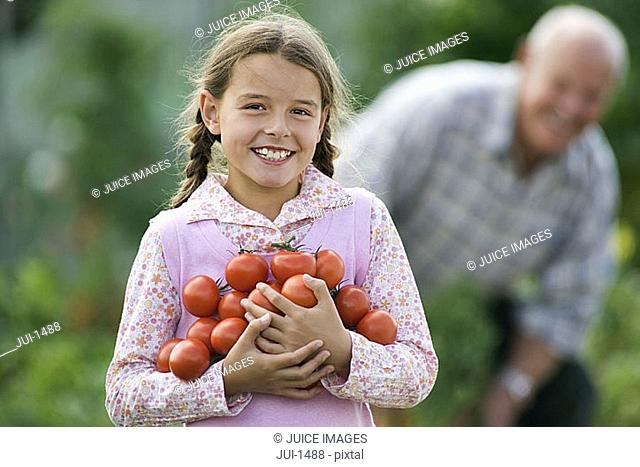 Girl 8-10 carrying bunch of tomatoes, smiling, portrait, grandfather working in vegetable garden