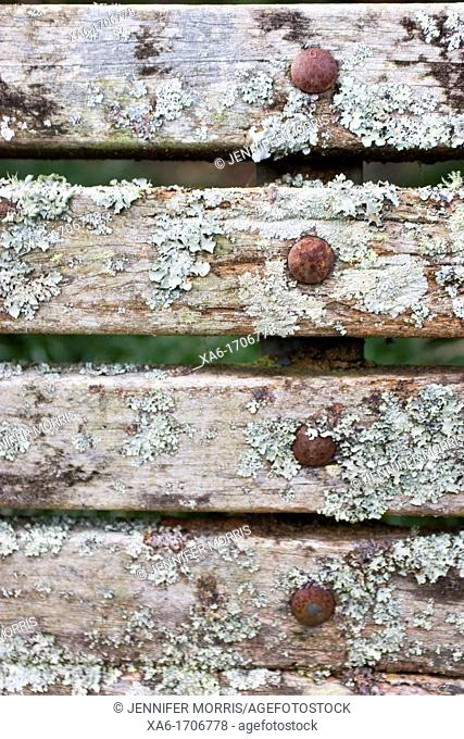 Lichen covered bench detail with rusty rivets