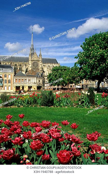 J Bocquet public garden with the Cathedral of Our Lady in background, Amiens, Somme department, Picardy region, France, Europe