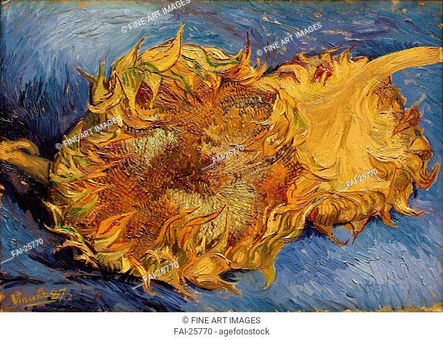 The Sunflowers. Gogh, Vincent, van (1853-1890). Oil on canvas. Postimpressionism. 1887. Holland. Metropolitan Museum of Art, New York. Still Life