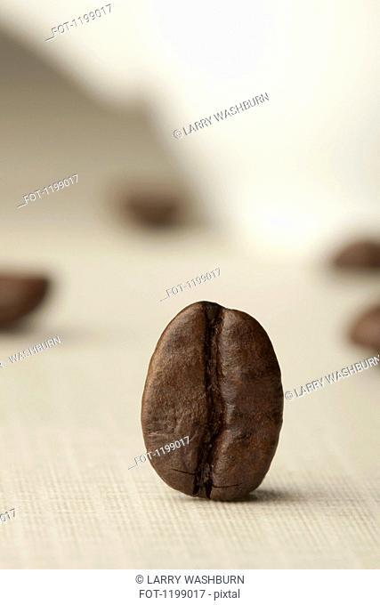 A coffee bean