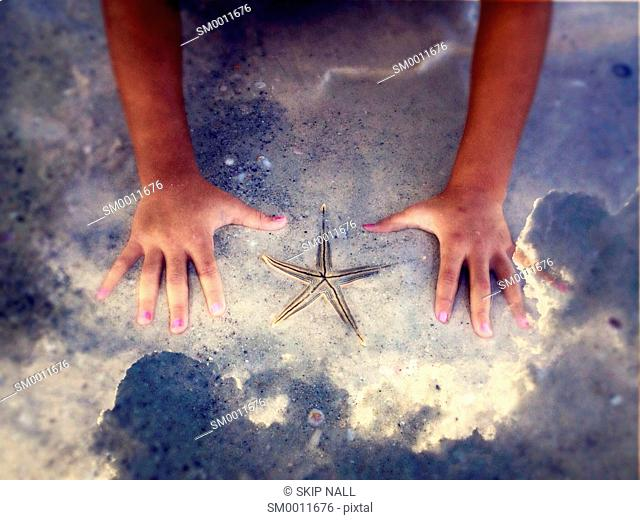 A child's hands surround a starfish on the sand at the beach with the sky reflecting clouds from above