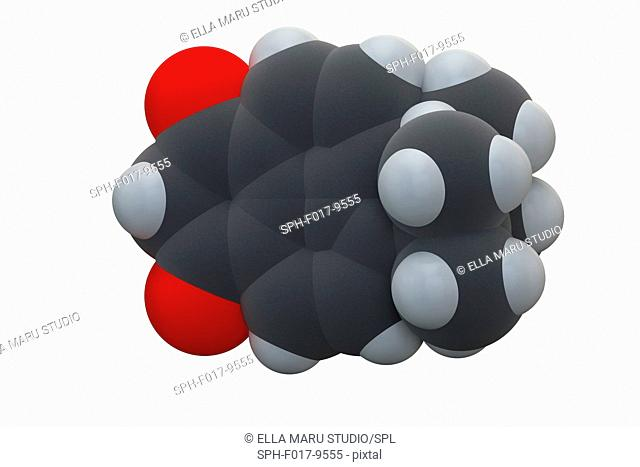 Avobenzone sunscreen molecule (UV filter). Chemical formula is C20H22O3. Atoms are represented as spheres: carbon (grey), hydrogen (white), oxygen (red)