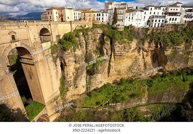 'El Tajo' canyon or gorge of Ronda, New Bridge, Puente Nuevo, Guadalevín River, Ronda, White Towns, Malaga province, Andalusia, Spain, Europe