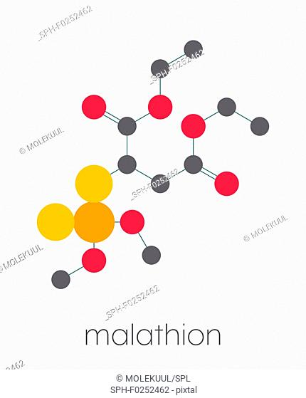 Malathion insecticide molecule. Used to treat head lice, body lice, scabies and in agriculture. Stylized skeletal formula (chemical structure)