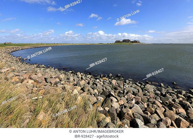 Dwelling mound on the Langeness holm, Langeness, Schleswig-Holstein, Germany, Europe