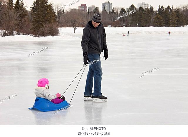edmonton, alberta, canada, a father pulls his young daughter in a sled over an outdoor ice rink