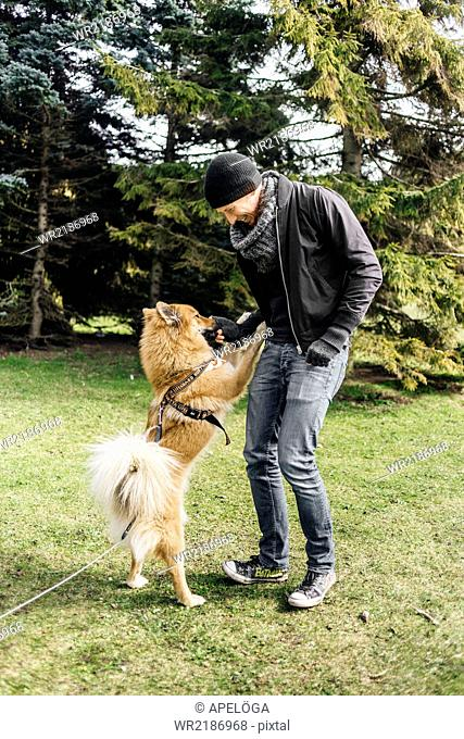 Full length of young man playing with Eurasier in park