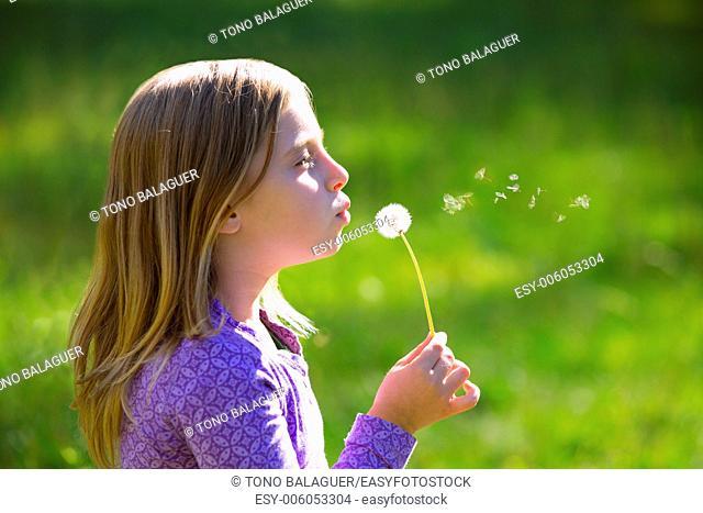 Blond kid girl blowing dandelion flower in green meadow outdoor profile view