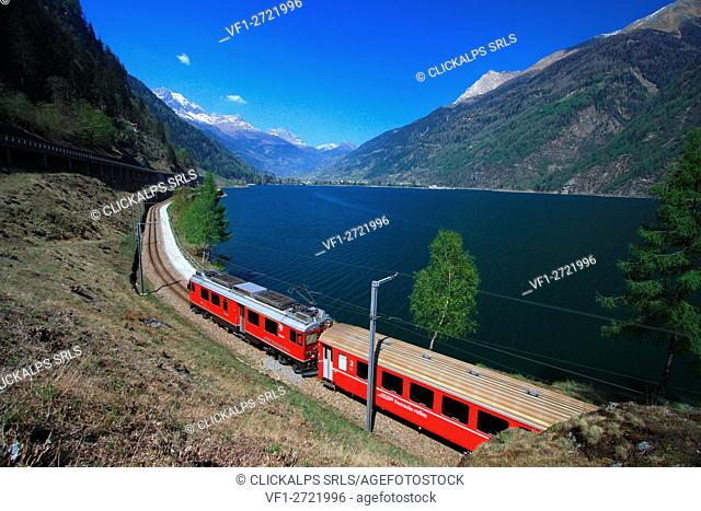 The Bernina Express along the banks of the Lake Poschiavo, Val Poschiavo, Switzerland Europe
