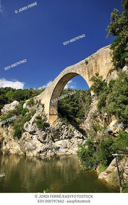 Romanesque bridge named Pont del LLierca at Tortellà, Garrotxa, Catalonia, Spain, Europe
