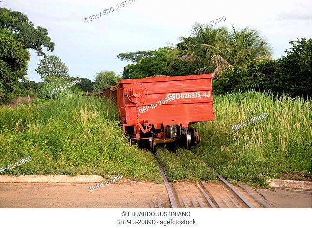 Train, Railroad, Miranda, Mato Grosso do Sul, Brazil