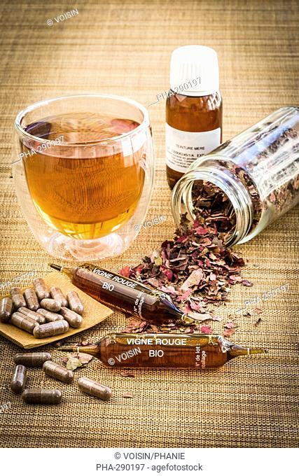 Capsules, mother tincture, herbal tea and organic red vine preparation