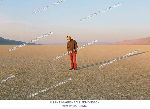 The landscape of the Black Rock Desert in Nevada. A man wearing an animal mask. Casting a long shadow on the ground