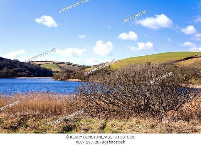 England Devon Torcross Slapton Ley Nature Reserve