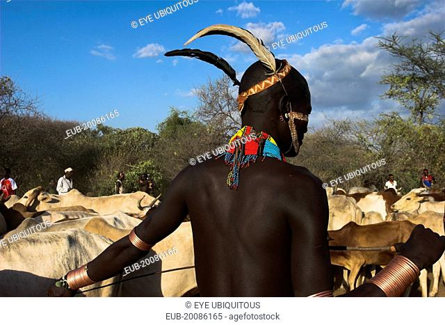 Hama Jumping of the Bulls initiation ceremony, Ritual dancing round cows and bulls before the initiate does the jumpin