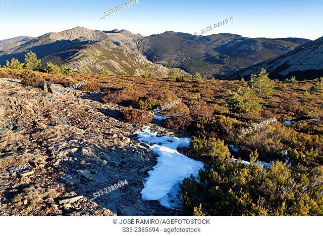 Cuerda de las Berceras and Buitrera peak in the Sierra Norte. Guadalajara. Castilla la Mancha. Spain. Europe