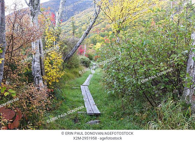 Foot path along Echo Lake in Franconia Notch State Park of the New Hampshire White Mountains during the autumn months