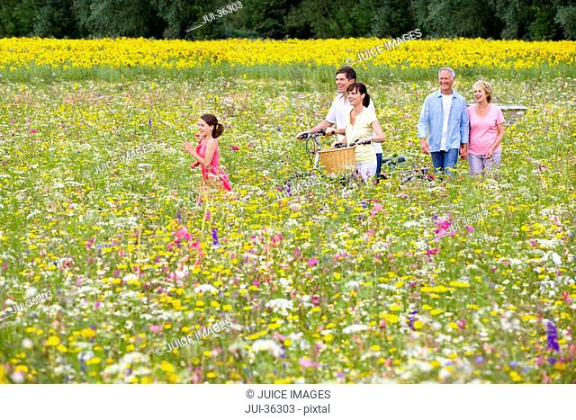 Multi-generation family with bicycles walking among wildflowers in sunny meadow