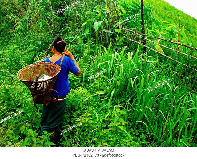 Ethnic people of Bandarban cultivate zoom in the hilly area that meet most of their food around the year It is very hard to cultivate in stiff hilly area but...