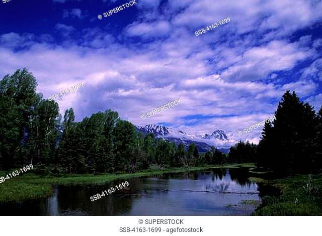 USA, WYOMING, GRAND TETON NATIONAL PARK, TETON RANGE, SNAKE RIVER, SCHWABACHER LANDING, MOUNT MORAN