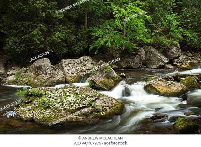 Sydenham River at Inglis Falls Conservation Area in Spring along the Niagara Escarpment near Owen Sound, Ontario, Canada