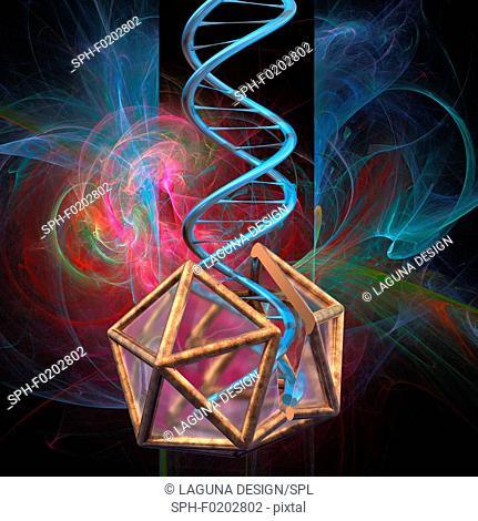 Viral gene therapy, illustration