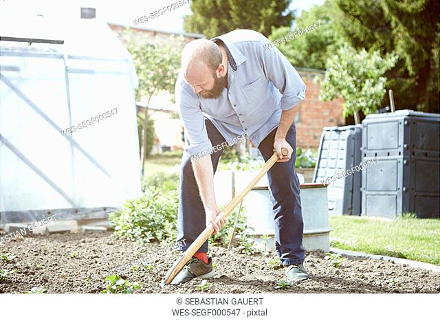 Young man working garden, digging