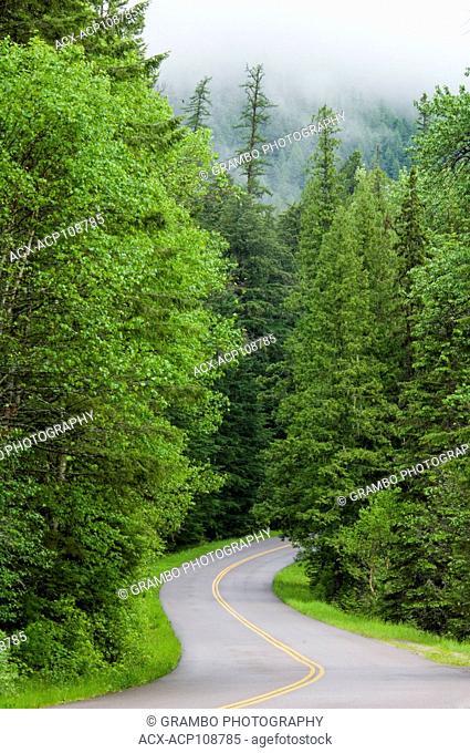 Winding road, Glacier National Park, Montana, USA