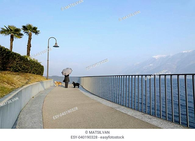 Woman with an umbrella walking on the lakefront with her two dogs and blue sky and palm trees