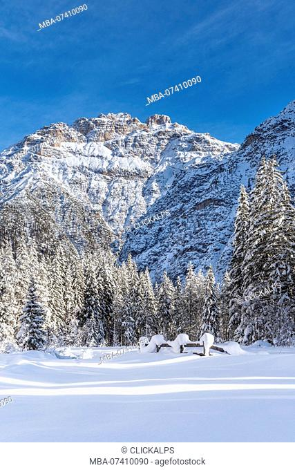 Carbonin / Schluderbach, Dobbiaco / Toblach, Dolomites, province of Bolzano, South Tyrol, Italy, Europe. The peaks of Mount Rudo