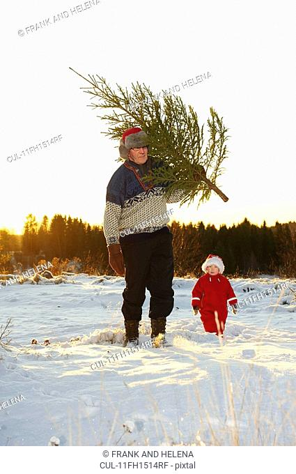 Man and boy with Christmas tree in snow