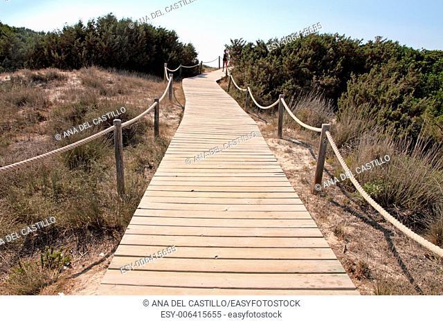 Illetes beach Formentera Balearic islands Spain