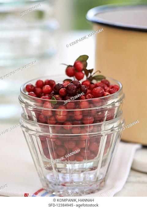 A glass of fresh cranberries