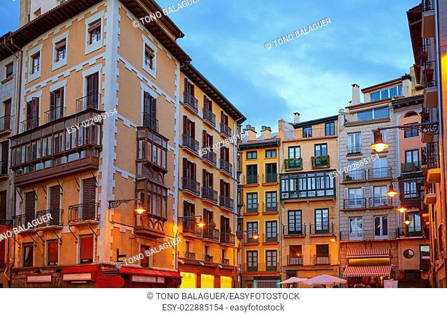 Pamplona Navarra Ayuntamiento city Hall square way of Saint James
