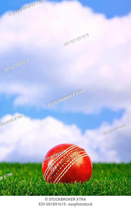 Photo of a cricket ball on grass with sky background
