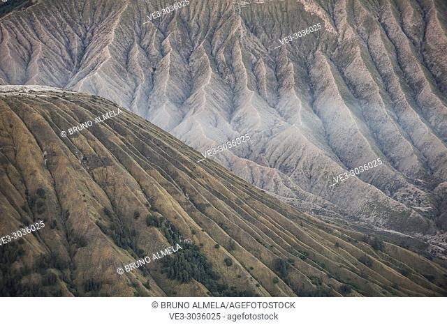 View of Batok and Widodaren Volcanoes slopes in Bromo Tengger Semeru National Park (East Java, Indonesia)