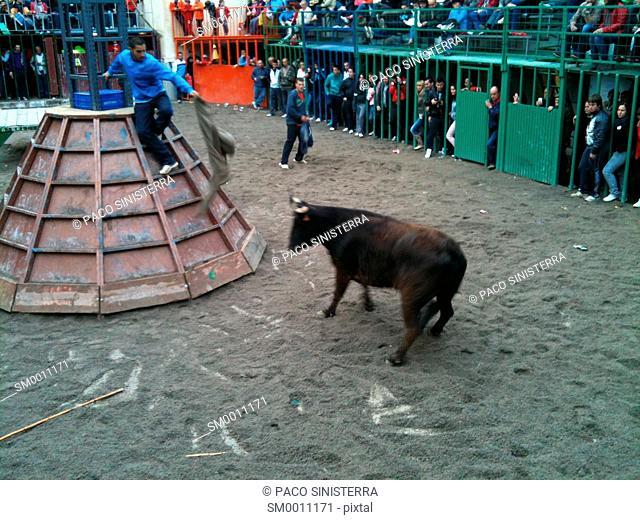 Toro festivals, Valencia, Spain