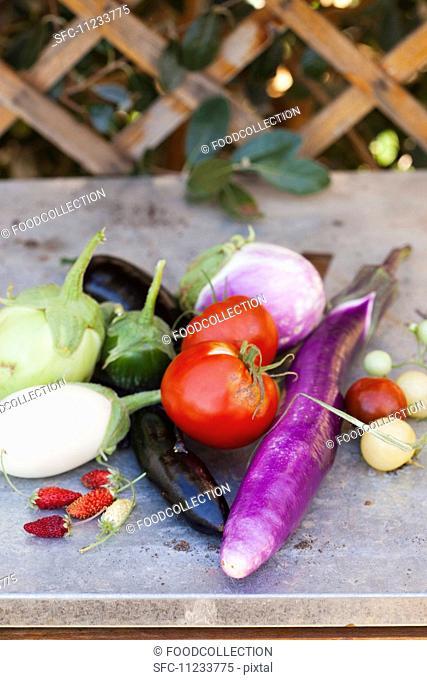Freshly Picked Vegetables Outside