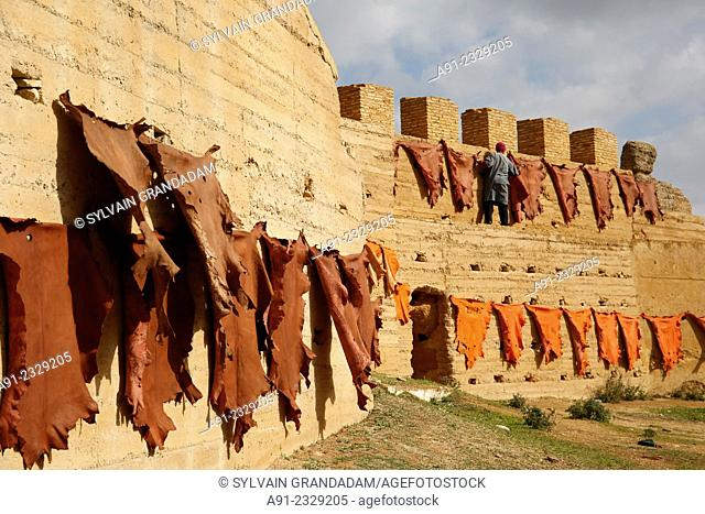 North Africa, Morocco, City of Fez (Fes), Medina, ramparts and cemetery wher the tanners from Chouara have their skins dried at sun