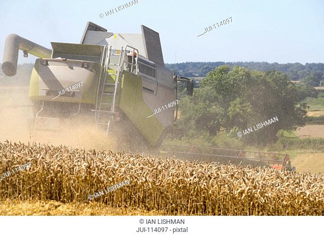 Rear View Of Combine Harvester Harvesting Wheat In Field