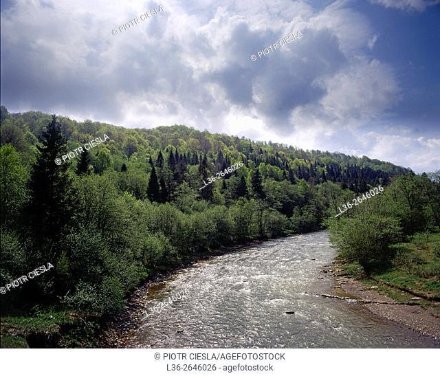 Wetlina river. Bieszczady Mountains. Poland