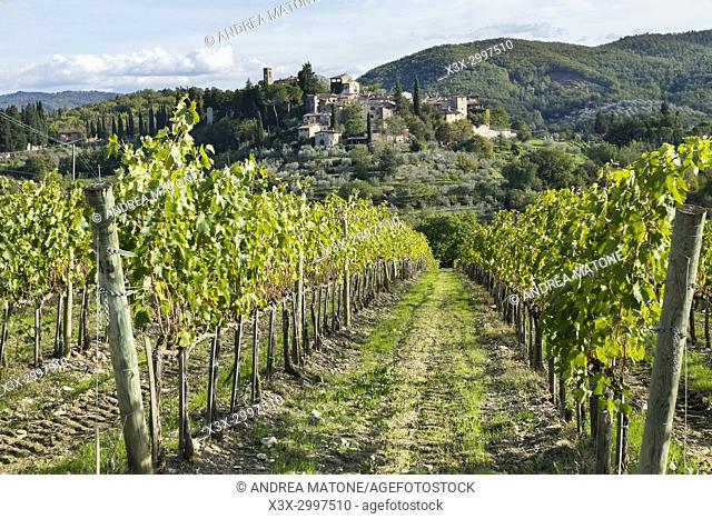 Tucan countryside. Tuscany Italy