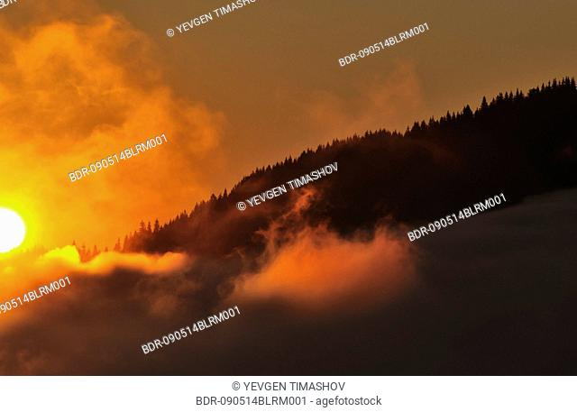 dzembronya landscape in ukraine at twilight