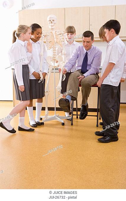 School children listening to biology teacher explain human skeleton