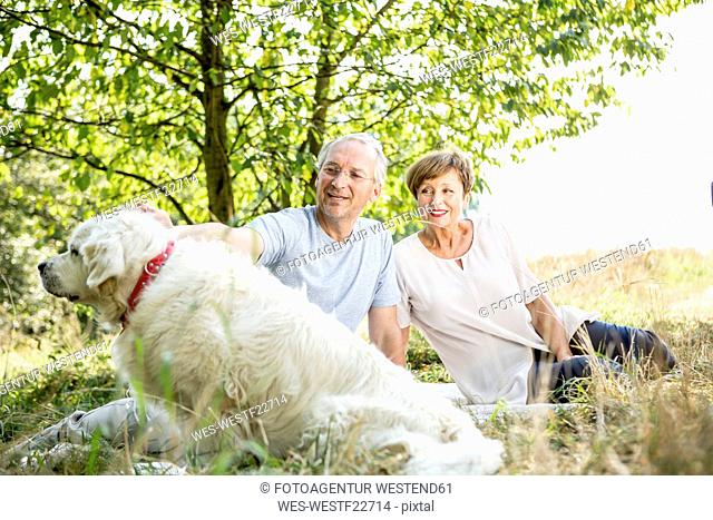 Senior couple with dog in meadow