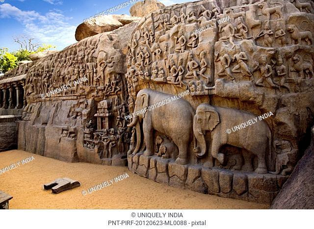 Stone carvings on the face of a rock at Arjuna's Penance, Mahabalipuram, Kanchipuram District, Tamil Nadu, India