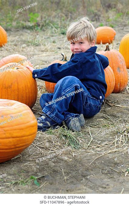 A little boy sitting amongst pumpkins